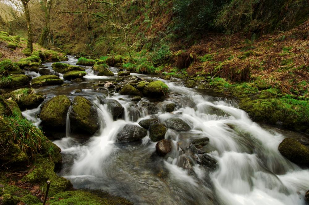 Dolgoch,Falls,,Wales